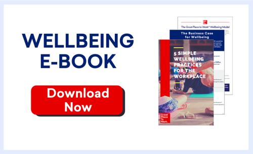 Blog Infographics (Wellbeing E-Book CTA 650px width)