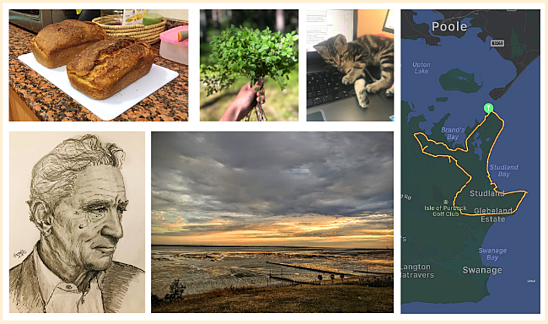 collage-great-place-to-work-uk-colleagues-photos