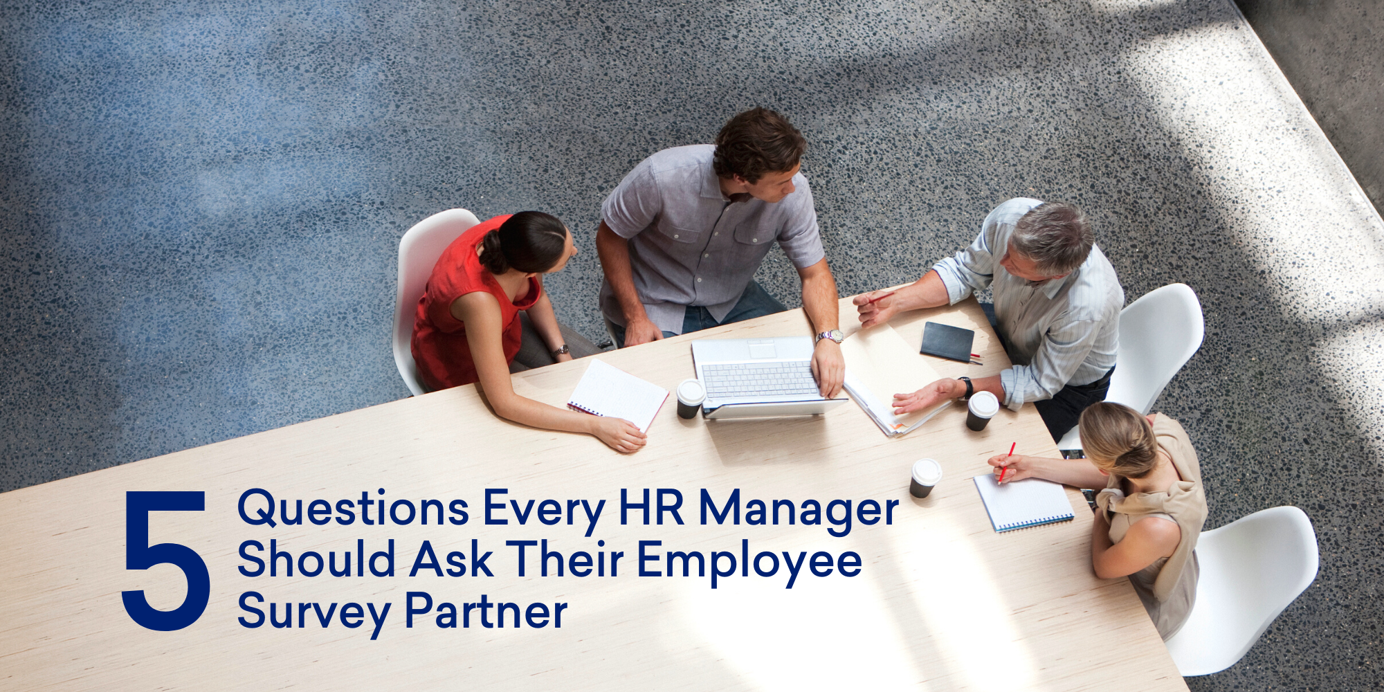 5 Questions Every HR Manager Should Ask Their Employee Survey Partner
